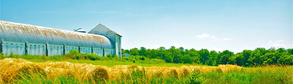 farm_header
